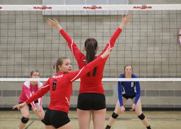 Volleyball: Safford sweeps Empire to win section title