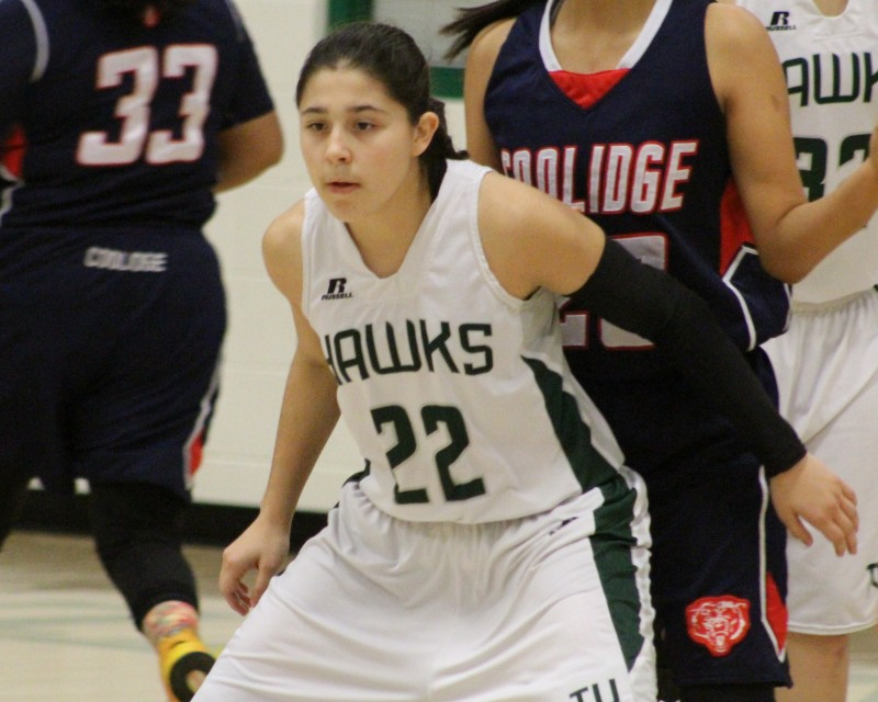 Tanque Verde guard Hailey Goley commits to Pima